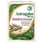 Dr. Chen Astragalus Baktövis kivonat cinkkel és C-vitaminnal 60 db