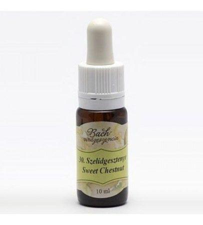 Bach Virágeszencia Szelídgesztenye 10 ml - Alternatív gyógymód, Bach virágterápia