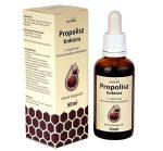 Dydex Propolisz tinktúra C-vitaminnal 50 ml - Étrend-kiegészítő, vitamin, Immunerősítés, roborálás